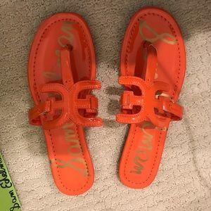 Sam Edelman brand new sandals- new with box!